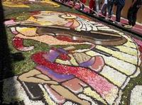 Infiorata 2010 - Bozzetti ispirati al tema: Musica dipinta: le forme e i colori della musica - MUSICA PICTA - Via Nicolaci - 16 maggio 2010  - Noto (2746 clic)
