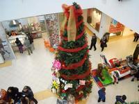 Epifania a Belicittà - l'albero di Natale - 6 gennaio 2010  - Castelvetrano (4048 clic)