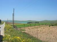 Lago Rubino - 1 maggio 2010  - Fulgatore (3000 clic)