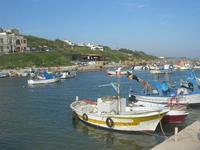 il porto - 1 maggio 2010  - Marinella di selinunte (2303 clic)
