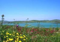 Lago Rubino - 1 maggio 2010  - Fulgatore (5062 clic)