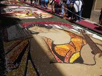 Infiorata 2010 - Bozzetti ispirati al tema: Musica dipinta: le forme e i colori della musica - THE MUSICIAN (Tamara De Lempicka) - Via Nicolaci - 16 maggio 2010  - Noto (2590 clic)