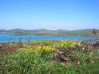 Lago Rubino - 1 maggio 2010  - Fulgatore (3067 clic)