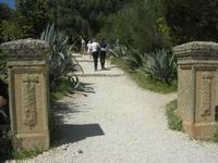 ingresso e sentiero che porta al tempio - 10 aprile 2011  - Segesta (1903 clic)