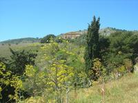 panorama e tempio - 10 aprile 2011  - Segesta (1789 clic)