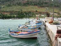 al porto - 31 ottobre 2010  - Castellammare del golfo (1094 clic)