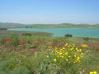 Lago Rubino - 1 maggio 2010  - Fulgatore (3742 clic)