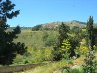 panorama e tempio - 10 aprile 2011  - Segesta (1905 clic)
