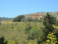panorama e tempio - 10 aprile 2011  - Segesta (1903 clic)