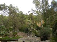 tetti e giardino - Terme Acquapia - 4 settembre 2011  - Montevago (1937 clic)