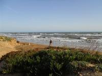 il mare d'inverno - 28 febbraio 2010   - Triscina (4879 clic)