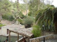 tetti e giardino - Terme Acquapia - 4 settembre 2011  - Montevago (1845 clic)
