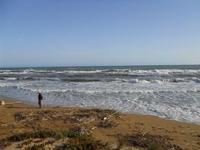 il mare d'inverno - 28 febbraio 2010   - Triscina (4481 clic)