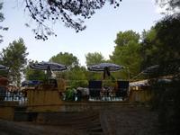 piscina tra gli alberi - Terme Acquapia - 4 settembre 2011  - Montevago (1922 clic)