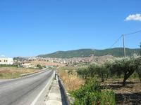 sulla strada che porta alla città - 31 agosto 2010  - Sambuca di sicilia (3130 clic)
