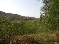 panorama agreste - Terme Acquapia - 4 settembre 2011  - Montevago (1837 clic)
