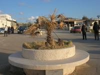 Piazza Riviera - 14 marzo 2010  - Cornino (3186 clic)