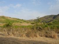 panorama agreste - Terme Acquapia - 4 settembre 2011  - Montevago (1699 clic)