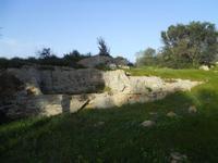 Cave di Cusa - zona archeologica - 28 febbraio 2010   - Cave di cusa (5185 clic)
