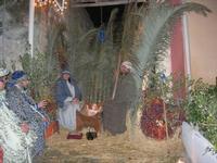 L'arrivo dei Re Magi - 6 gennaio 2011  - Guarrato (862 clic)