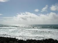 Golfo di Bonagia - kite surf - 2 giugno 2010  - Cornino (2867 clic)