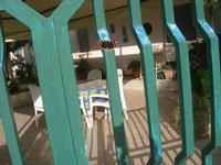 farfalla sul cancello - 2 dicembre 2010  - Alcamo (1187 clic)
