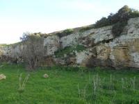 Cave di Cusa - zona archeologica - 28 febbraio 2010   - Cave di cusa (5101 clic)