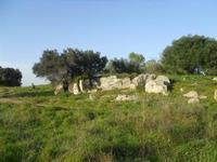 Cave di Cusa - zona archeologica - 28 febbraio 2010   - Cave di cusa (4769 clic)
