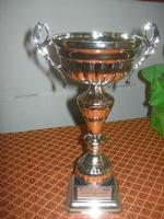 Olimpiadi della Gioventù - 2ª Edizione 2010 - coppa - I.C. Pascoli - 16 aprile 2010   - Castellammare del golfo (2613 clic)