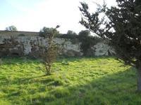 Cave di Cusa - zona archeologica - 28 febbraio 2010   - Cave di cusa (5063 clic)