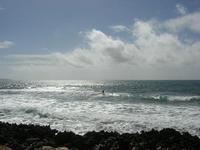 Golfo di Bonagia - kite surf - 2 giugno 2010  - Cornino (3300 clic)