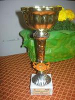 Olimpiadi della Gioventù - 2ª Edizione 2010 - coppa - I.C. Pascoli - 16 aprile 2010   - Castellammare del golfo (2573 clic)