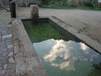 fontana - riflessi - 14 novembre 2010  - Riserva dello zingaro (1383 clic)