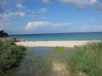 Baia di Guidaloca - sul fiume - 10 settembre 2010   - Castellammare del golfo (1131 clic)