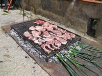 grigliata di carne - 25 aprile 2010  - Castellammare del golfo (3426 clic)