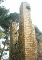 Castello Eufemio - 11 aprile 2010   - Calatafimi segesta (2255 clic)