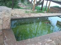 fontana e riflessi - 14 novembre 2010  - Riserva dello zingaro (1648 clic)
