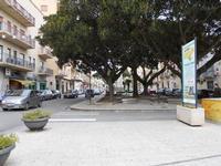Piazza Giacomo Matteotti - 13 dicembre 2010  - Castelvetrano (2732 clic)