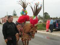 C/da Matarocco - 3ª Rassegna del Folklore Siciliano - SAPERI E SAPORI DI . . . MATAROCCO - organizzata dal gruppo folk I PICCIOTTI DI MATARO' - 10 ottobre 2010  - Marsala (1178 clic)