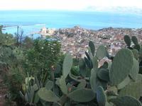 Fichidindia - panorama della città e del Golfo di Castellammare - 2 novembre 2010  - Castellammare del golfo (1140 clic)