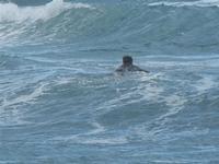 surf - Baia di Cornino - 9 ottobre 2011  - Cornino (1698 clic)