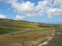 paesaggio rurale - 2 giugno 2010  - Buseto palizzolo (1639 clic)