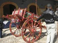 Infiorata 2010 - carretto siciliano esposto nel vecchio mercato - 16 maggio 2010  - Noto (2612 clic)