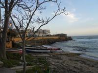 il piccolo borgo marinaro tra Mazara del Vallo e Campobello di Mazara - 28 febbraio 2010   - Torretta granitola (2363 clic)