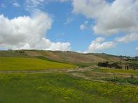 paesaggio rurale - 2 giugno 2010  - Buseto palizzolo (1646 clic)