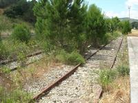 stazione ferroviaria - binari - 2 giugno 2010  - Calatafimi segesta (2223 clic)