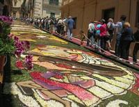 Infiorata 2010 - Bozzetti ispirati al tema: Musica dipinta: le forme e i colori della musica - MUSICA PICTA - Via Nicolaci - 16 maggio 2010   - Noto (2495 clic)