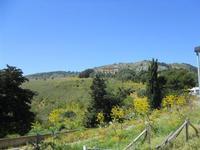 zona archeologica e tempio - 10 aprile 2011  - Segesta (1866 clic)