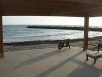 sul mare - 21 febbraio 2010   - Marinella di selinunte (3332 clic)