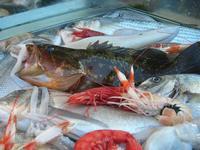 pesci in vetrina - La Cambusa - 2 novembre 2010   - Castellammare del golfo (2359 clic)